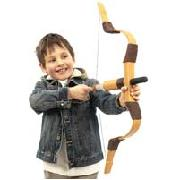 Robin Hood Electronic Recurve Bow Set